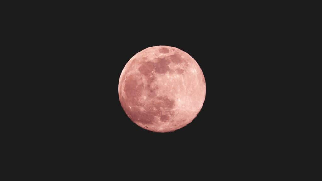 When To See The First Pink Supermoon Of The Season In Charlotte