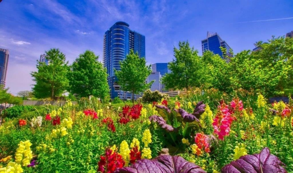 58 Fantastic Things To Do In Charlotte This June